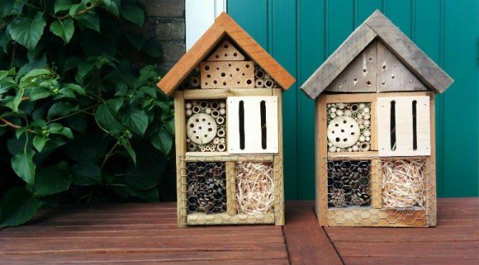 maak samen met je opa,oma, papa of mama een insectenhotel – bij ons